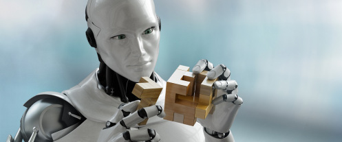 Robot with wooden puzzle