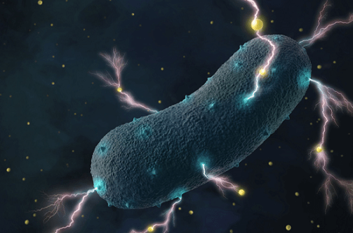 smart cells