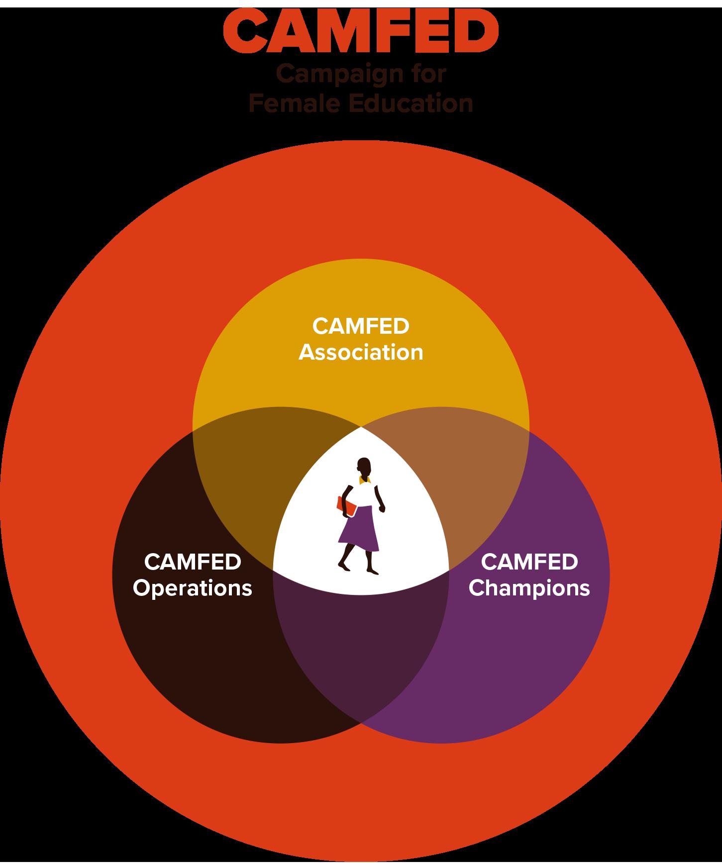 CAMFED - Copie
