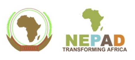 gs nepad logo new