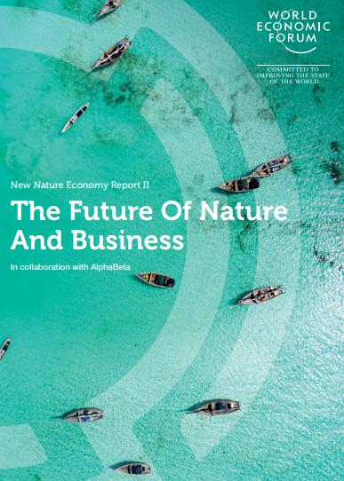 WEF nature report